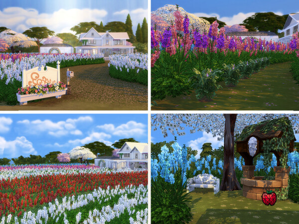 Florence farm no cc by melapples from TSR