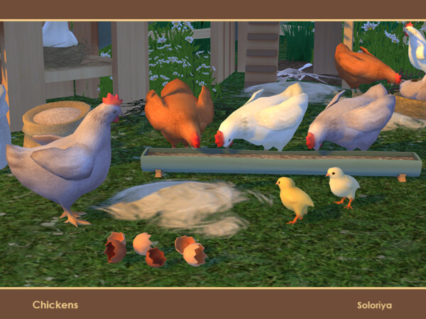 Chickens by soloriya from TSR