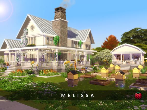 Melissa bee farm no cc by melapples from TSR