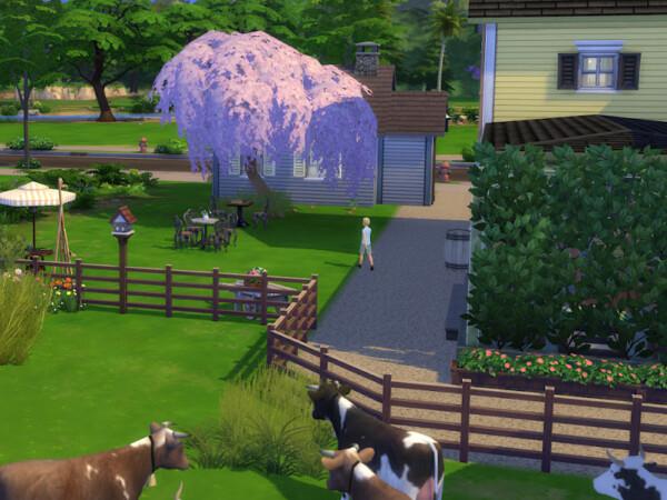 Madison Farm from KyriaTs Sims 4 World