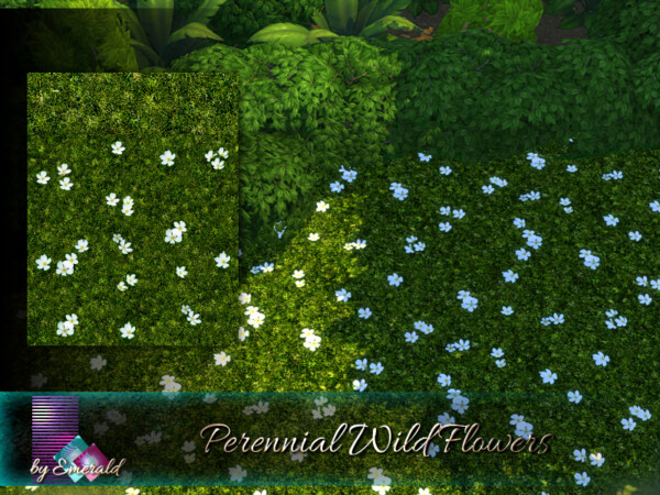 Perennial Wild Flowers by emerald from TSR