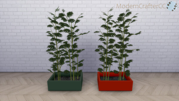 Potted Modern Asian Bamboo from Modern Crafter