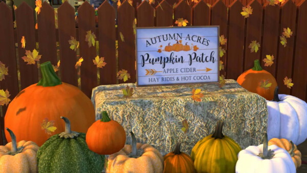 Pumpkin Patch Signs from Sunkissedlilacs
