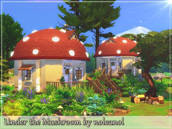 Under the Mushroom Home by nolcanol from TSR