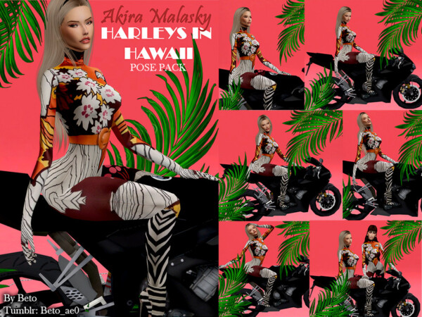 Harleys In Hawaii by Beto ae0 from TSR
