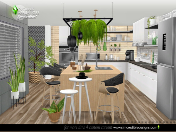 Naturalis Appliances by SIMcredible! from TSR