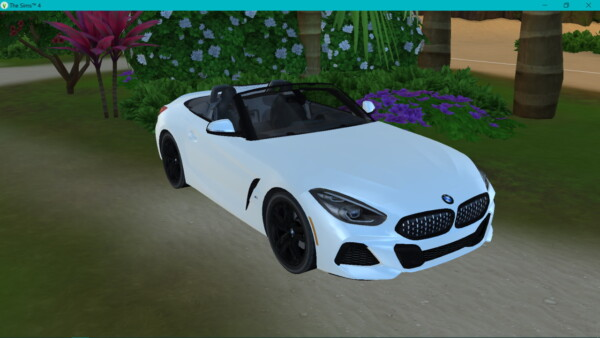 BMW Z4 from Lory Sims