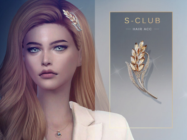 Hair ACC 202019 by S Club from TSR