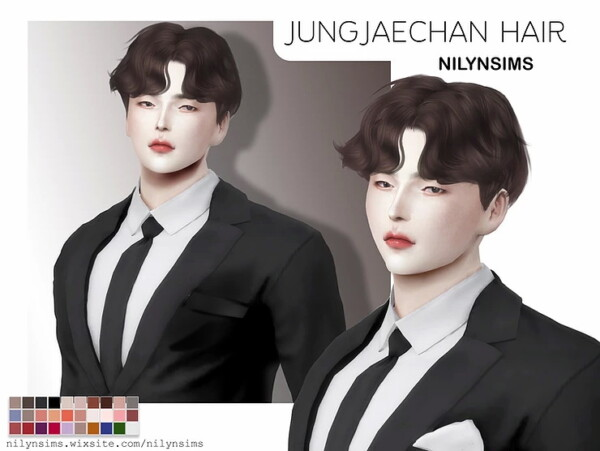 Jung Jae Chan Hairstyle from Nilyn Sims 4