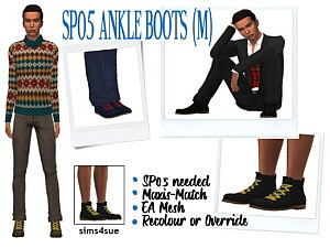 Ankle boots recolored