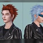 Hair G34 by DaisySims