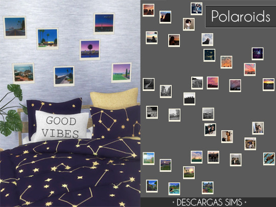 Polaroids from Descargas Sims