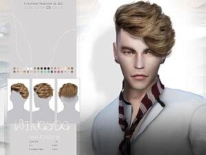 TO0220 Hair sims 4 cc