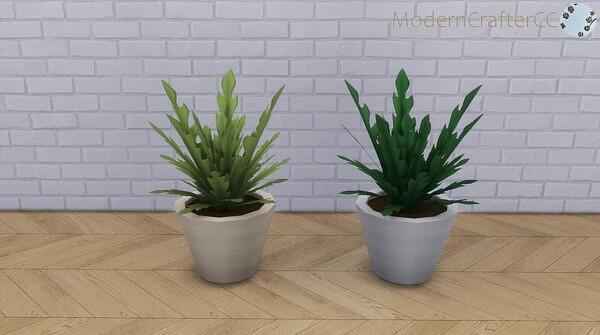 The Short Contemporary Radishly Plant Sims 4 CC