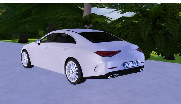 2019 Mercedes Benz CLS from Lory Sims