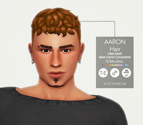 Aaron Hairstyle sims 4 cc