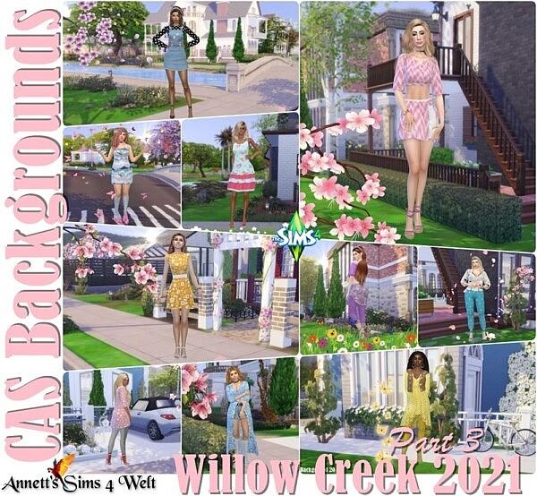 CAS Backgrounds Willow Creek 2021 Part 3 sims 4 cc
