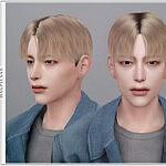 Cookie V1 Hair sims 4 cc
