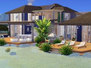 Coral Cove sims 4 cc