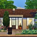 Cozy Eco house