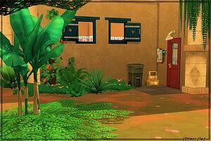 The Lone Cactus sims 4 cc