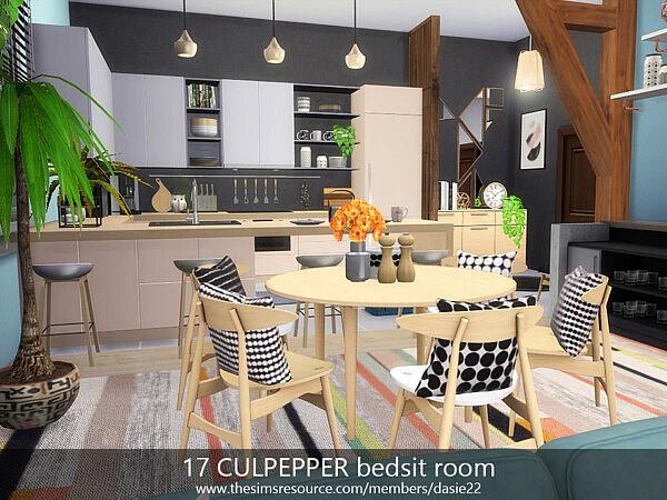 17 CULPEPPER bedsit room