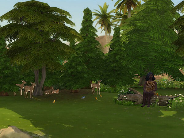 The Woods from KyriaTs Sims 4 World
