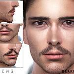 Beard N79 sims 4 cc