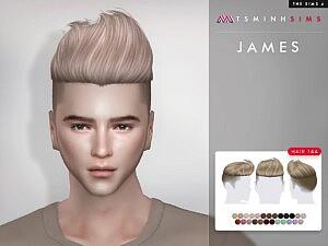 James Hair 144 sims 4 cc