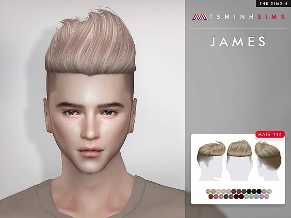 James Hair 144 by TsminhSims from TSR