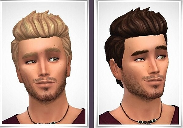Johannes Hair from Birkschessimsblog