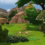 The Savannah and Little Pond sims 4 cc