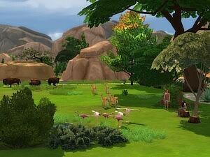 The Savannah and Little Pond sims 4 cc