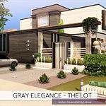Gray Elegance The Lot