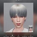 Hair JAJA sims 4 cc