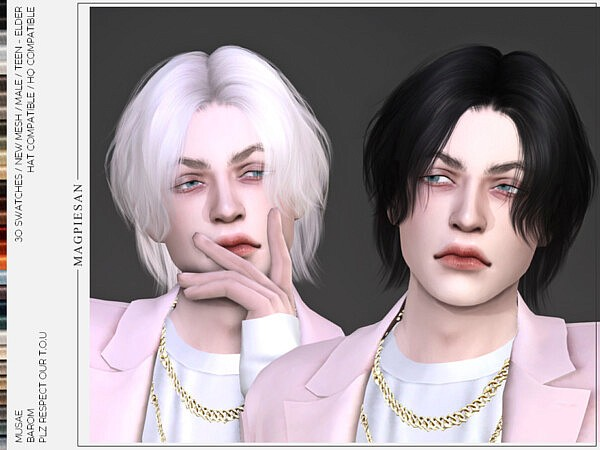 Barom Hair by magpiesan from TSR