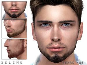 Beard N86