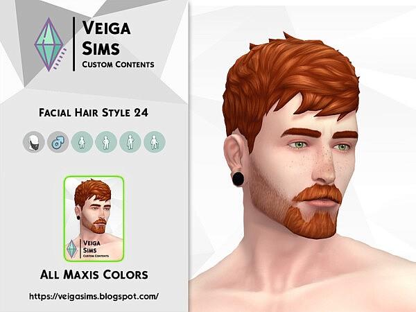 Facial Hair Style 24