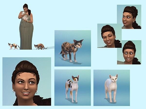 Oikos Elaiom from KyriaTs Sims 4 World